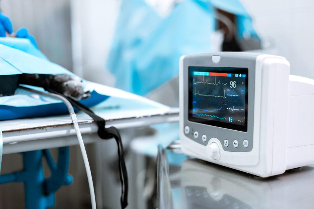 Hjertemonitor veterinærklinikk